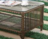 Juego de sofá de jardín de ratán muebles al aire libre (TG-1299)