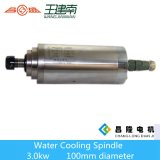 Motore raffreddato ad acqua poco costoso dell'asse di rotazione del router di CNC 3kw del rifornimento dorato della Cina