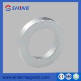 De ringvormige Magneet van het Neodymium van de Zeldzame aarde voor Spreker