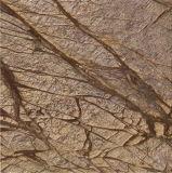 가져오기 열대 다우림 지면 훈장을%s 황금 브라운 대리석 돌 도와