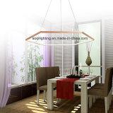 Acryl-LED hängendes Licht des modernen Entwurfs-(AQ-66056-60)