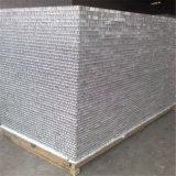 Panneau en aluminium de mur rideau de panneau de nid d'abeilles (HR120)