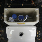 Ovs Ceramic Bathroom Best Design Toilets Flush Valve