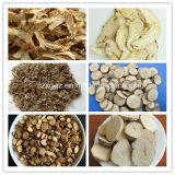 Riemen-Trockner für chinesische Kräuterstücke