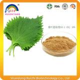 Порошок выдержки листьев шелковицы с Dnj для потери веса