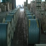 Fio de aço folheado de alumínio da costa do fio de Acs (19*3.5mm)