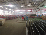 6 lignes de transplanter de riz diesel