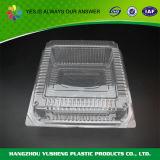 Frucht-Wegwerfplastikbehälter