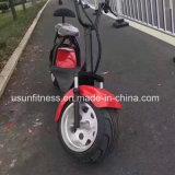 1500W Harley bicicleta eléctrica 18polegadas Scooter Eléctrica de montanha dos pneus