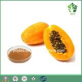 フルーツジュースのパパイヤの粉の乾燥したパパイヤの葉のエキスの粉