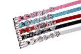 Het Leer van Pu personaliseert de Halsbanden van de Brieven van de Dia van het Kristal