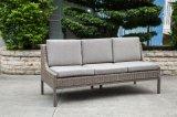 Sofà moderno di lusso rattan/del vimine per mobilia esterna (LN-2004)