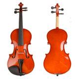 Costume de Bunnel élève violon 4/4 (plein) La taille