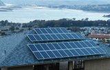 50W Nouveau Style Mono-Crystalline Silicon Solar Power Panel