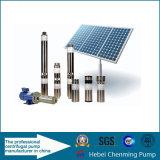 Estrutura da bomba de parafuso e uso da água DC Bomba de água submersível solar