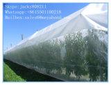 Сеть насекомого HDPE прозрачная аграрная анти- для Анти--Птицы и Анти--Насекомого плодоовощ