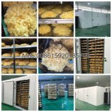 Venda por grosso de processamento de Secagem de alimentos vegetais secos Máquina / Garrafa