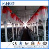 現代養豚場で使用される供給の伝達システム