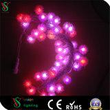 Heißes Dekoration-Zeichenkette-Licht des Verkaufs-LED für Partei