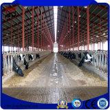 Загерметизированная добром структура стальной рамки для дома скотоводческого хозяйства