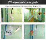 Wasserdichtes Gewehrkugel-Netz drahtlose im Freien CMOS videoip-Kamera IR-