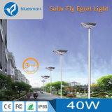 alumbrado público accionado solar de 40W LED con alto lumen