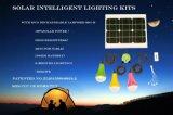 sistema domestico solare di 3W 11V con la lampada solare registrabile 375lum di Dimmable LED per il servizio dell'Africa