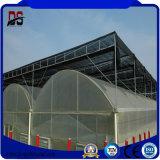 Аграрные парники рекламы стеклянной крышки стальной структуры