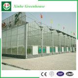 Casa verde del palmo de la agricultura de China Xinhe de la hoja multi de la PC con el sistema del hidrocultivo