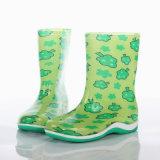De nieuwe Schoenen van de Regen van pvc van de Manier, de Populaire Laarzen van de Regen van het Jonge geitje van de Stijl, de Transparante Laarzen van het Jonge geitje, de Populaire Laarzen van het Kind, de Laarzen van de Regen van de Kinderen van de Mode