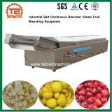 Correia Industrial Blancher contínua frutas equipamento de branqueamento de Vapor