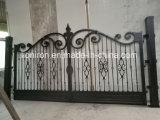 Het decoratieve Ontwerp van de Poort en van de Deur van de Ingang van het Smeedijzer van Nice