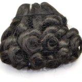 Выдвижение Lbh 147 человеческих волос курчавой девственницы Fumi оптовой цены малайзийское