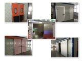 Porte d'oscillation/porte de charnière/porte coulissante pour la chambre froide