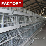 Cage automatique de couche de poule de ferme avicole de coût bas de qualité