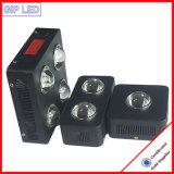 COB Grandir avec les lampes LED 126W 504W 600W 1000W