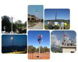 옥상을%s 저잡음 녹색 에너지 600W 24V 48V 수직 바람 터빈 풍력 시스템