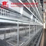 D'Héna Jinfeng Conception de la couche d'oeufs de poulet de type H Prix de la cage pour le Nigéria