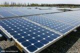 Piles solaires et panneaux de Purswave 80W 12V avec le contrôleur pour le congélateur du réfrigérateur 24V du réfrigérateur 12V de C.C