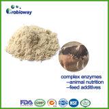 Complexe de la cellulase de l'enzyme xylanase OEM pour le bétail d'additifs alimentaires