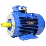 Motor de indução assíncrono elétrico de alumínio com CE