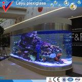 Acrylic Fish Tank現代およびLuxury