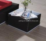 プロジェクトの屋外の庭の考えの家具の倍Sunlounge (YT167-1)を使用して高品質の上