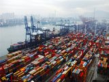 De Cargadoor van China van Shenzhen/Guangzhou aan Freetown/Sierra Leone