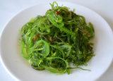 Qualitäts-Nahrungsmittelgrad-Propylen-Glykol-Alginat