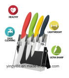 Super acrílica de calidad cuchillo magnético titular