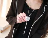 MaxiHalsband van het Kristal van de Kleur van de manier de Zilveren