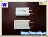 Wirewound Weerstand van Rgg voor PCB (rx27-5)