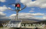 1000W Gerador de Energia Nova ( 200W - 5KW )