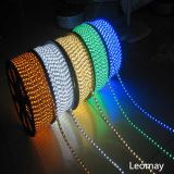 BOBINA STRISCIA 220V RGB / Simple Color Flex LED Strips